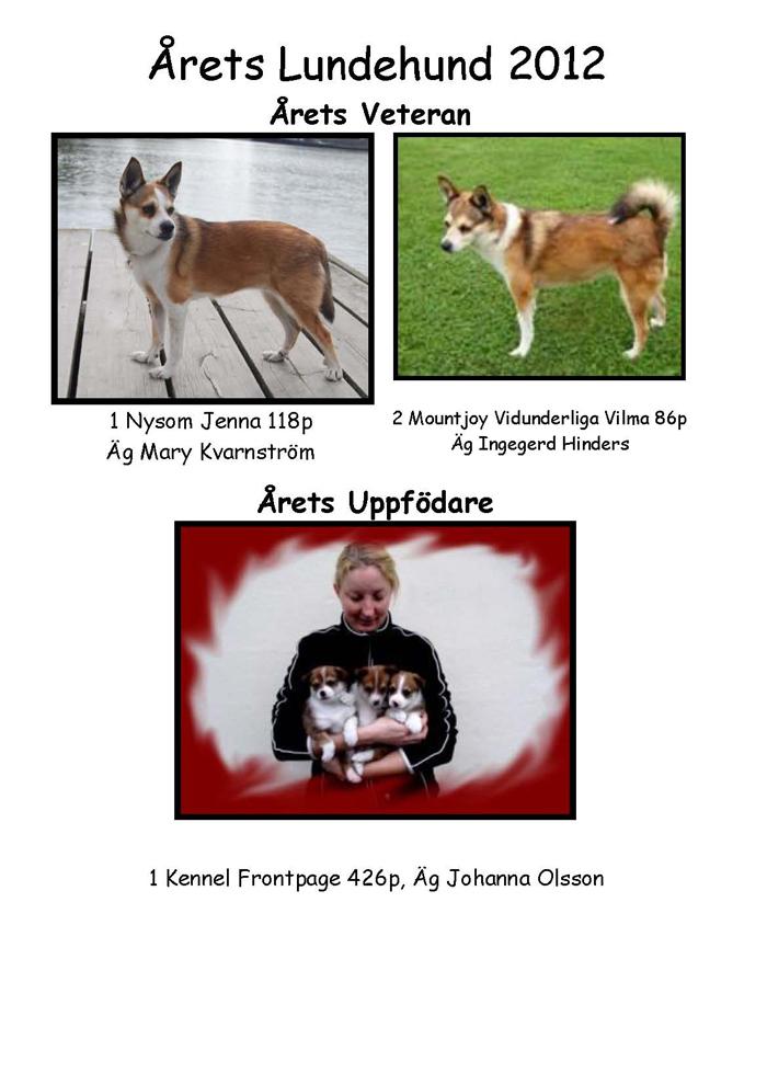 Årets lundehund veteran